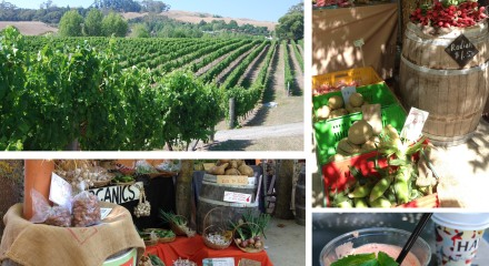 Sunshine, vineyards and farmers' markets.