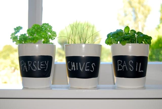 Handy Herbs